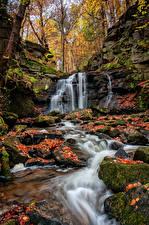 Фото Осенние Водопады Камни Лист Мох Природа