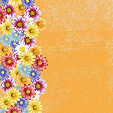 Фотография Маргаритка Рисованные Разноцветные Шаблон поздравительной открытки