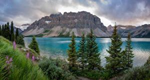 Обои для рабочего стола Канада Горы Озеро Облака Bow Lake Природа