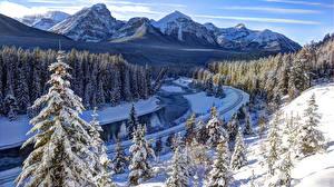 Картинки Канада Зима Гора Леса Парки Пейзаж Банф Снега Alberta Природа