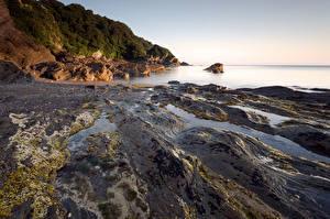 Картинки Англия Берег Море Devon Природа