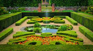 Картинки Англия Парки Фонтаны Лондоне Дизайн Кусты Hampton Court Palace Природа