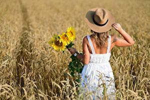 Фотографии Поля Букет Подсолнухи Блондинка Платье Шляпы Вид сзади Selina молодые женщины
