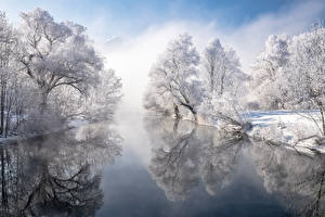 Обои Германия Зима Реки Бавария Дерево Отражении Снег Природа