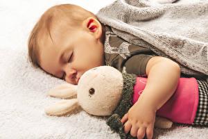 Обои для рабочего стола Зайцы Игрушка Младенцы Сон Дети