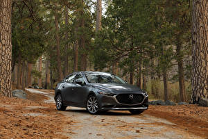 Фотографии Мазда Серый Металлик 2020 Mazda3 Sedan Автомобили