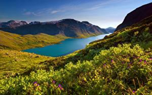Картинка Горы Озеро Норвегия Парк Траве Lake Gjende, Jotunheimen mountains, Jotunheimen National Park Природа