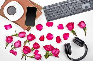 Картинки Розы Клавиатура Кофе Белом фоне Лепестки В наушниках Смартфоны Чашке Книга Красный цветок Еда