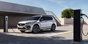 Обои Seat Кроссовер Металлик Гибридный автомобиль Tarraco FR eHybrid, 2020 --