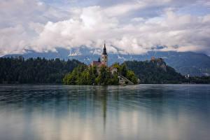 Фотография Словения Остров Озеро Башня Bled, Upper Carniolan