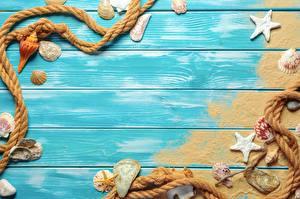 Фотография Морские звезды Ракушки Шаблон поздравительной открытки Доски Песок Канат
