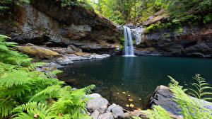 Фотографии Камень Водопады Природа