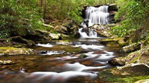 Фотография Камни Водопады Мха Ручеек Природа