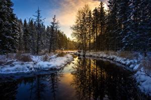 Фотографии Рассветы и закаты Зима Леса Река Снег Отражение Природа