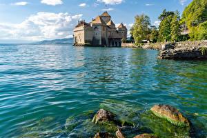 Картинки Швейцария Замки Озеро Камень Мох lake Geneva Chillon castle Города Природа