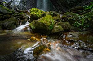 Фотографии Швейцария Водопады Камни Мох Finstersee Waterfall Природа