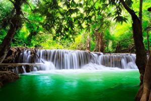 Фото Таиланд Водопады Деревья Erawan Waterfall, Erawan National Park, Kanchanaburi