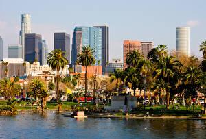 Картинка Штаты Здания Лос-Анджелес Калифорния Пальм город