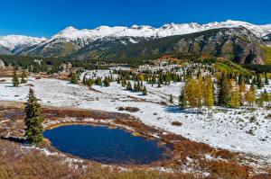 Картинка Штаты Гора Лес Пейзаж Снеге San Juan National Forest Природа