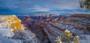 Фотография Штаты Парк Гранд-Каньон парк Утес Снега Каньона Arizona
