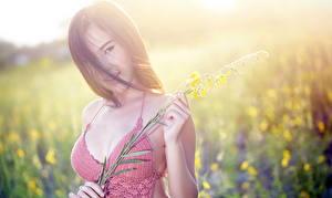 Фотография Азиаты Размытый фон Шатенки Смотрит Руки девушка