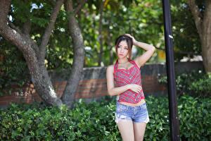 Фото Азиатки Боке Шатенка Рука Шорт молодая женщина