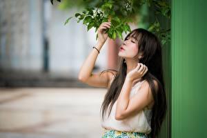 Фотографии Азиатки Ветвь Брюнетка Размытый фон Рука Девушки
