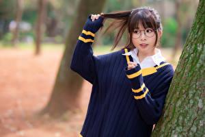 Обои Азиатки Миленькие Свитере Очках Руки Боке молодые женщины