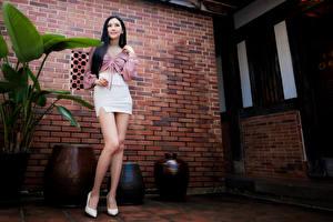 Фотографии Азиатки Позирует Ноги Юбка Блузка Смотрит девушка