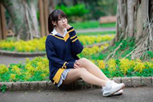 Картинки Азиатка Сидит Ноги Свитер Очки Взгляд Девушки
