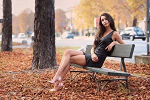 Фотографии Осень Лист Скамейка Сидя Шатенки Платье Рука Ног Туфель девушка