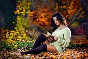 Картинка Осенние Лист Брюнеток Свитера Книга Рука Сидя Чтение Ноги Гольфах девушка
