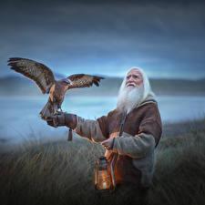 Картинки Птицы Керосиновая лампа Старый мужчина Размытый фон Elena Shumilova