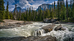 Картинки Канада Парк Горы Река Камни Деревья Emerald Lake, Yoho National Park Природа