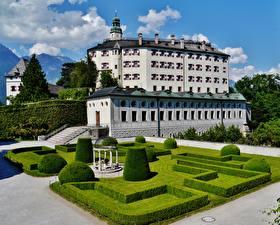 Фотографии Замки Австрия Музей Дизайн Кусты Ambras Castle, Innsbruck город