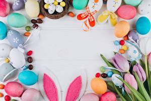 Фотография Пасха Яйцо Ушки кролика Шаблон поздравительной открытки