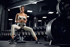 Картинка Фитнес Спортзал Гантеля Сидит Тренировка Взгляд девушка Спорт