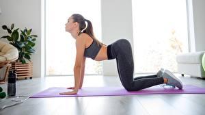 Картинка Фитнес Поза Тренировка девушка Спорт