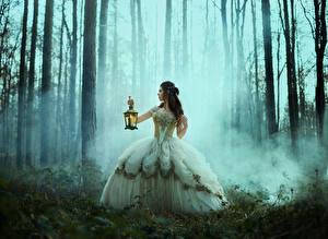 Фотографии Лес Брюнетки Тумане Платье Рука Ламп девушка