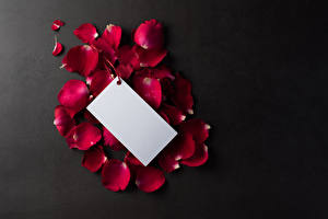 Обои для рабочего стола Сером фоне Шаблон поздравительной открытки Лепестки Бордовые Лист бумаги Цветы