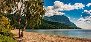 Картинка Греция Побережье Залив Деревья Скалы Island Euboea Природа