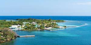 Фото Остров Море Тропики Honduras, Roatan island, Mahogany Bay Природа