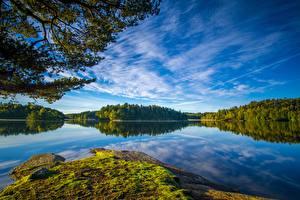 Картинки Озеро Лес Финляндия Небо Ветка Lake Oulujärvi Природа