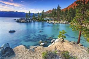 Фотография Озеро Камни Лес Рассветы и закаты Штаты Sierra Nevada Природа