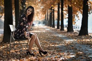 Картинка Парки Осенние Скамейка Листья Размытый фон Брюнетки Сидя Платье Ноги Туфель девушка