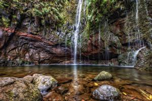Фото Португалия Водопады Камни Скале Мха Madeira Природа