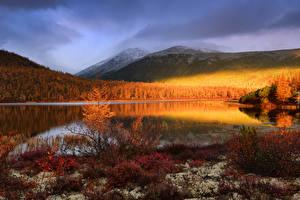 Картинки Россия Осенние Озеро Горы Лес Jack London Lake, Magadan region, Yagodninsky district Природа