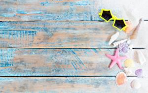 Обои Морские звезды Доски Шаблон поздравительной открытки Очков