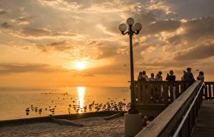 Картинка Рассвет и закат Птица Чайки Штаты Набережной Уличные фонари Флорида город
