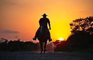 Картинка Рассветы и закаты Лошади Силуэта Ковбоя животное